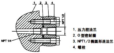 单晶硅变送器过程连接-1/2NPT不锈钢椭圆形法兰(代码1)